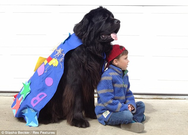 Superdog: The caped canine watches over his human friend
