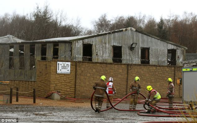 Some of the animals rescued by firefighters suffered smoke inhalation and could not be saved by vets