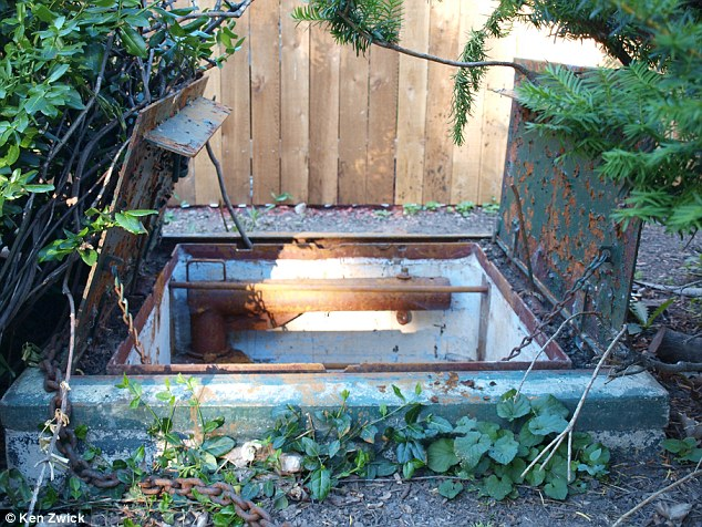 Hidden treasure: Metal bulkhead doors protect the entryway into the underground fallout shelter in the Zwick family's backyard in Neenah, Wisconsin