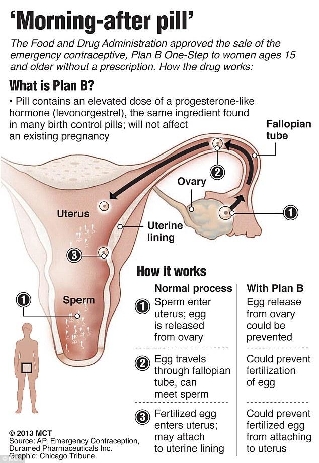 does plan b affect birth control pill