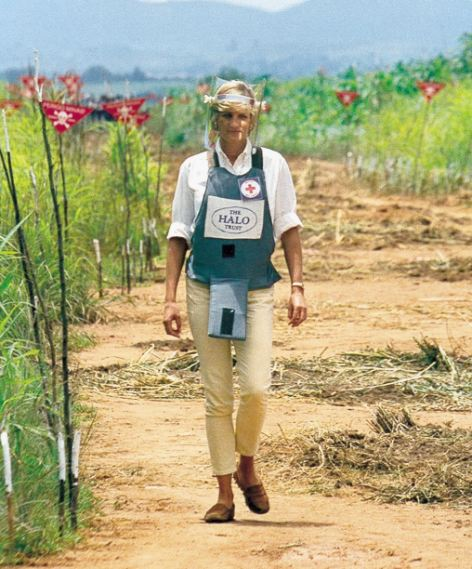 Proud: Diana, Princess of Wales walking near a minefield in Huambo, Angola. Prince Harry said his mother would be 'proud' of his work supporting an anti-landmine charity she championed