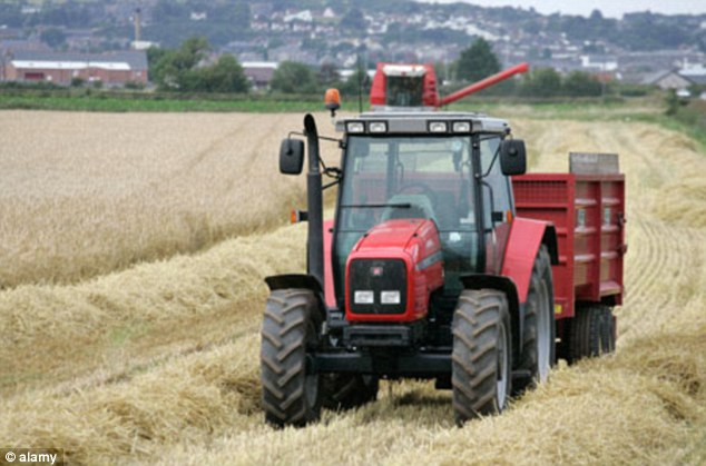 Good news for farmers: A new 'superwheat' can increase wheat crop yields by up to 30 per cent