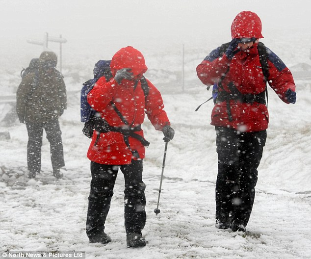 Tough conditions: Snow blizzards fall across the Pennines in Cumbria today, forcing ramblers to wrap up warm