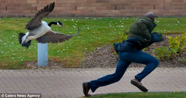 A surprised male student tries to make a run for it on campus at the University of Warwick