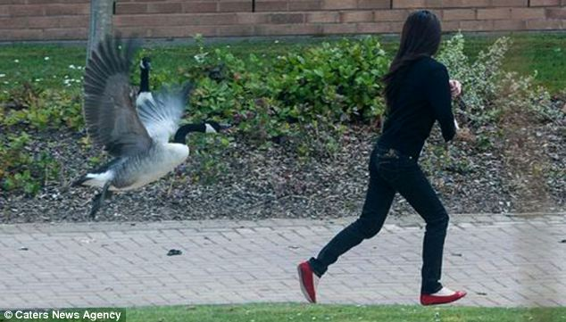 Another woman beats a swift retreat from the pathway near the rest