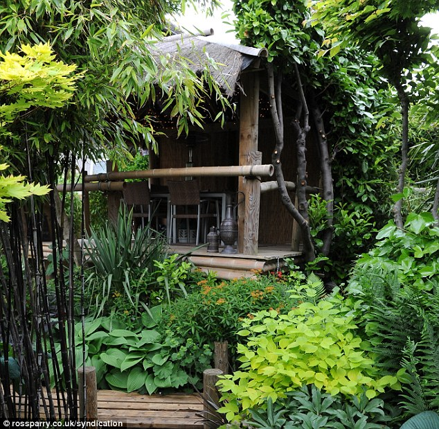 Man Creates Exotic Paradise Garden With Banana Plants And Palm