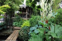 Man creates exotic paradise garden with banana plants and ...