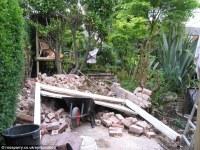Man creates exotic paradise garden with banana plants and ...