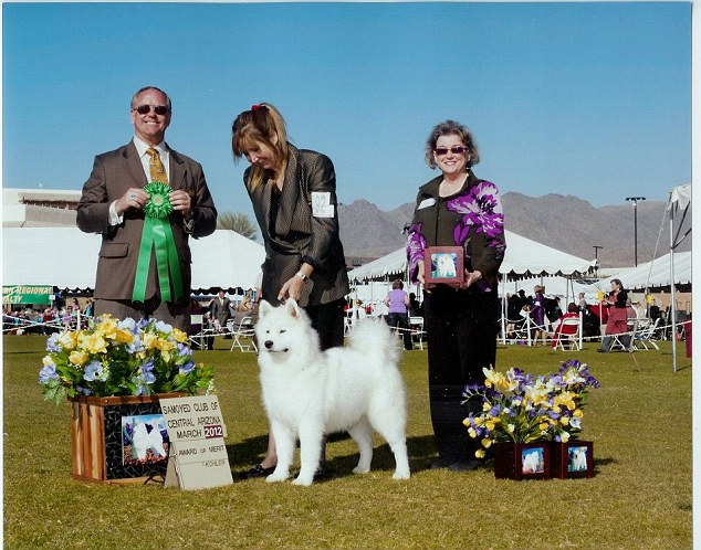 Best in show: Cecile Stanton's Facebook profile has photos of many past dog shows her animals have competed in
