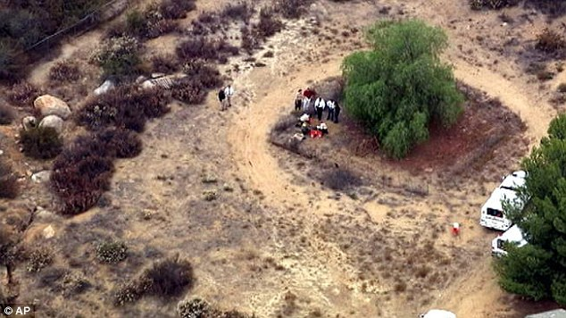 Shallow grave: Investigators found the boy buried under a tree just 75 feet from his house