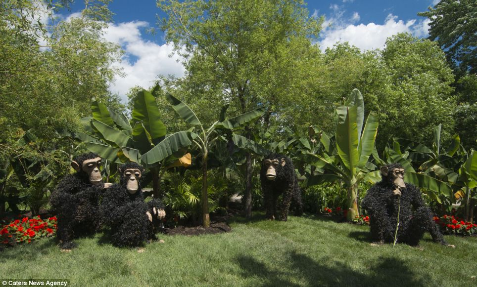 A family of monkeys is seen gathered on one mound where the artist has also brought in giant leaves to recreate the animals' environment in Montreal