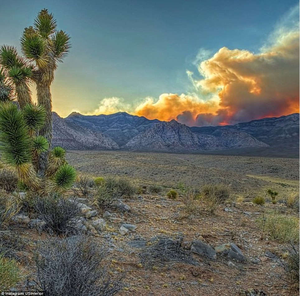 Nevada: The Red Rock National Conservation Area