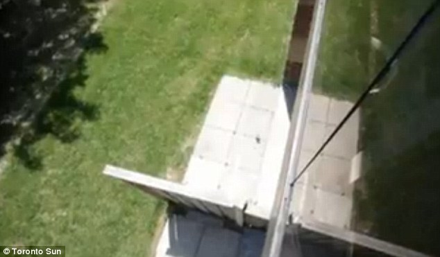 Amazing: The baby fell six stories to this patio and survived