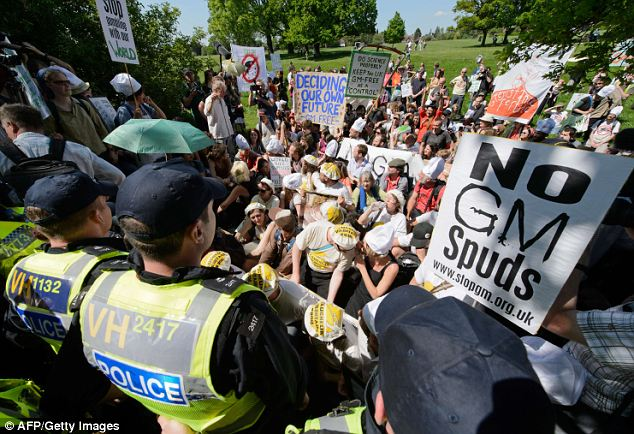 Mass opposition: Protesters stage a sit-in against GM foods last year. Monsanto is dropping all of its requests to launch insect and pesticide-resistant forms of corn, sugar beet and soya beans because of opposition