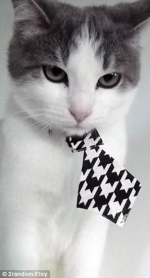 Cat neckties