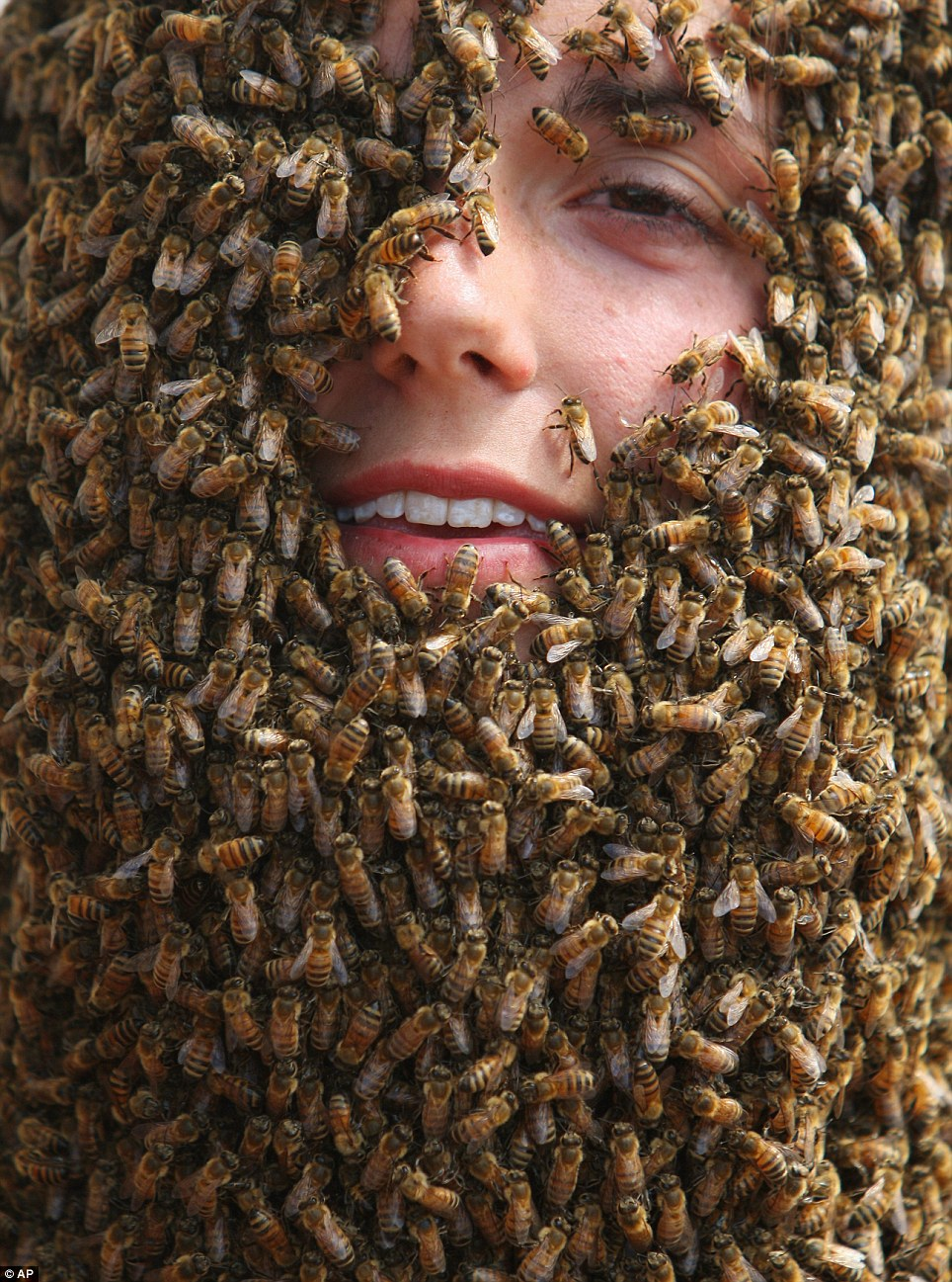 Image result for man swarmed by bees pictures