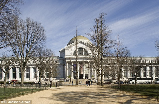 Cultural abyss: The National Museum of Natural History at the Smithsonian Institution in Washington D.C. would be one of many to close during a shutdown