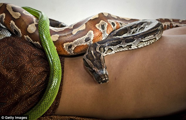 The Jakarta spa claims that the fear of feeling moving snakes is said to help alleviate stress by releasing adrenaline