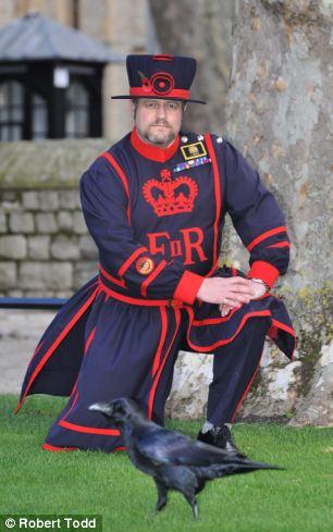 After a predator eats two Tower of London ravens ROBERT HARDMAN meets the rather belligerent