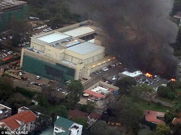 Capable: Storm was not aware of the direct role Ikrima played in the Westgate Mall massacre, but believes he had the potential to mastermind such an attack