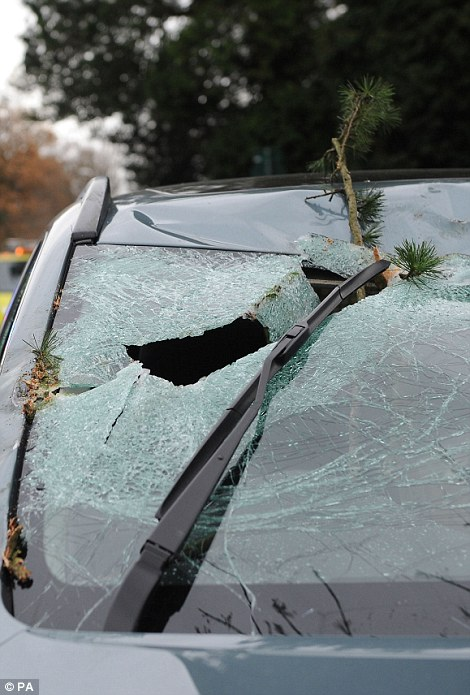 Un conductor tiene una suerte de escapar después de sufrir lesiones de poca importancia como un árbol cayó sobre su coche en Solihull, Birmingham