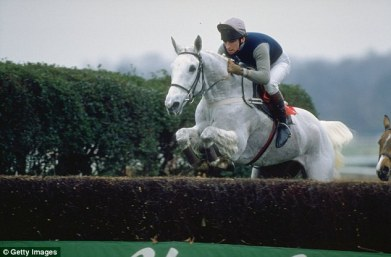 racehorses to remember desert orchid