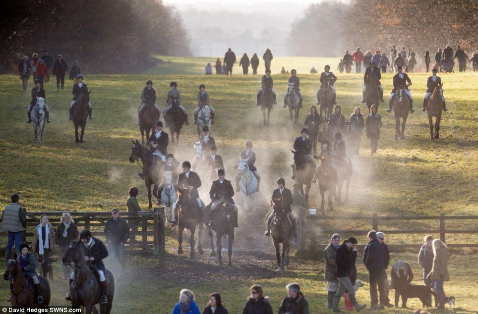 est100 一些攝影(some photos): Rider, 獵犬,在維多利亞時期,是在英聯邦部分地區慶祝的節日,詞組, Boxing Day. 騎士,超多折扣等你沖鴨! | OTTAWAZINE NEWS