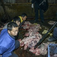 NIGERIANS LOVE CHINESE FOOD...BUT HOW SAFE ARE THOSE LAMB CHOPS ON MANDARIN MENUS?...SEE PICTURES