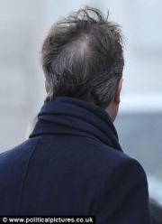 david cameron's grey hair display