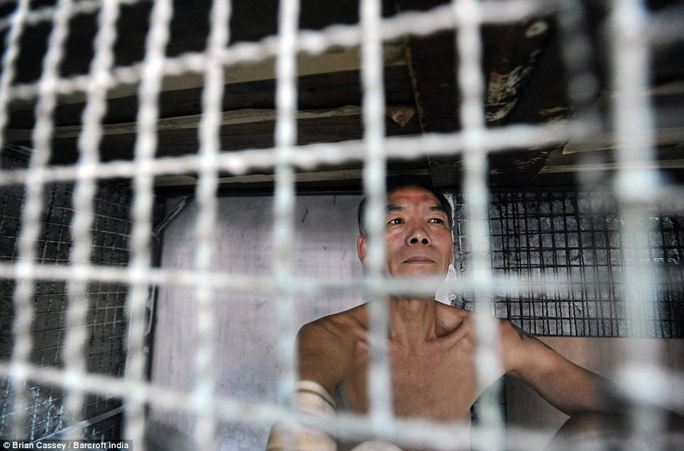 Behind bars: Yan Chi Keung, 57, lives in a ground-level cage with two more stacked above him, paying about £100 a year to live in the desolate iron and timber shanty