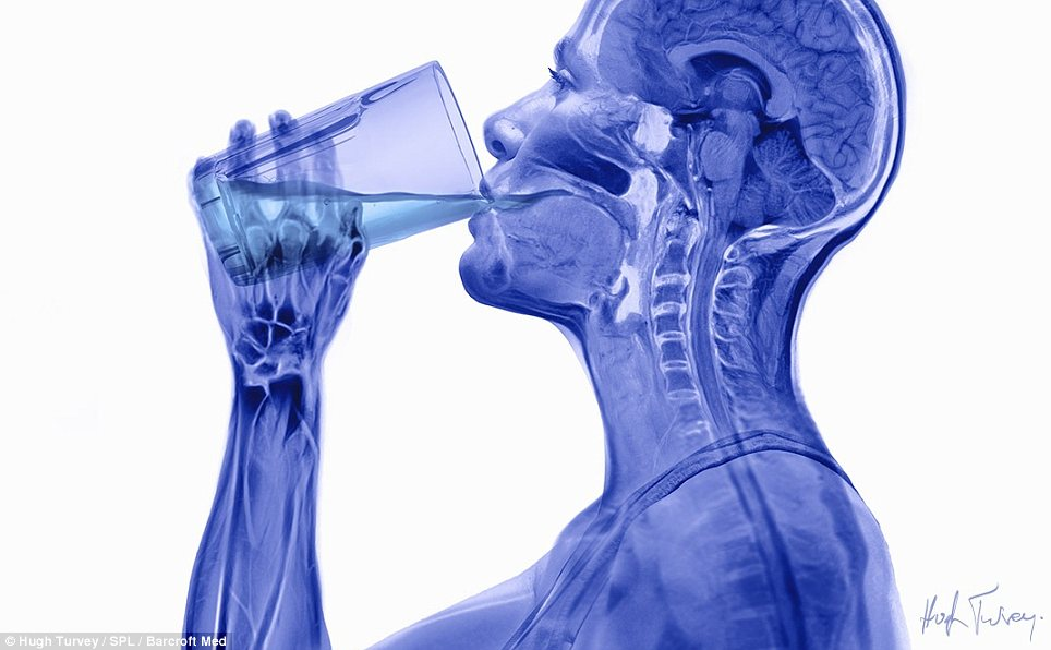 Complexity: Sticking more closely to the usual use of x-rays, the second image, on display in London, shows a human taking a drink of water