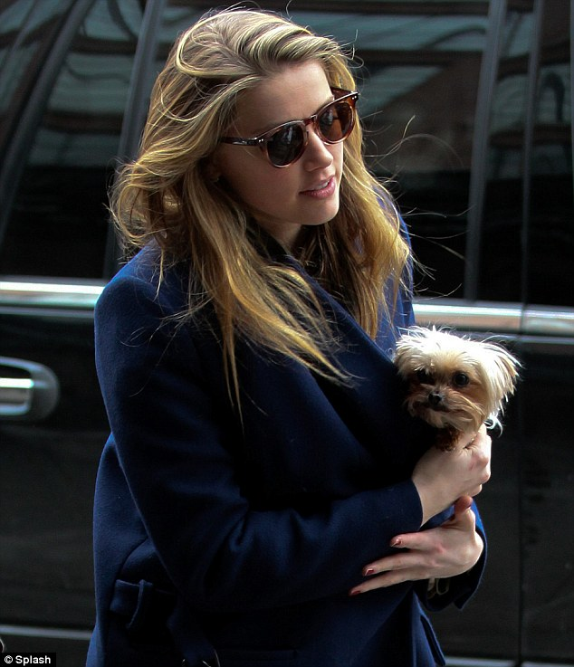 Amber Heard Tucks Her Cute Puppy Into Her Trench Coat As