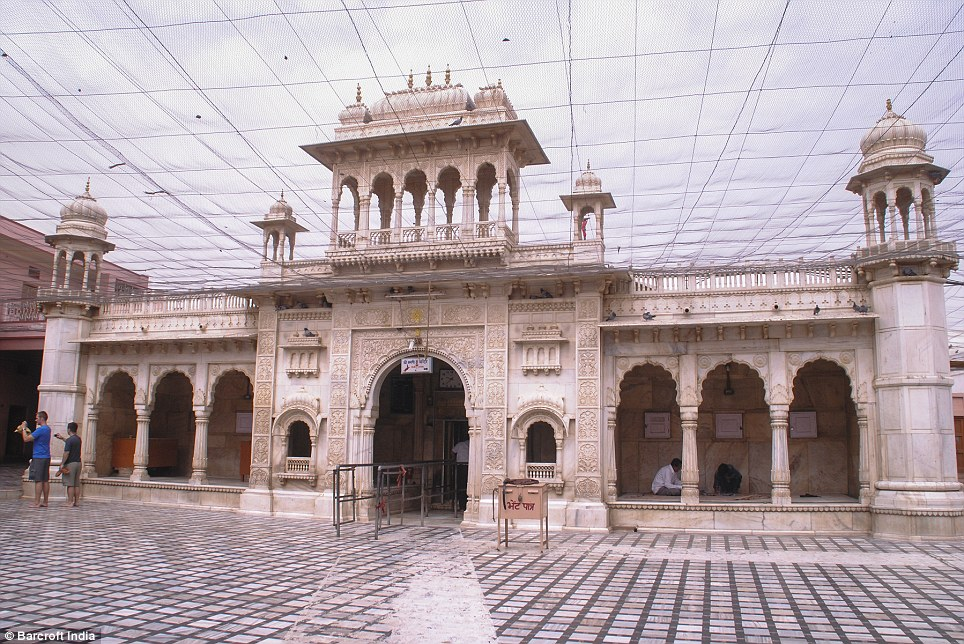Image result for Karni Mata Temple