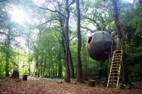 Tree tents suspended from wires in Cornish forest are ...