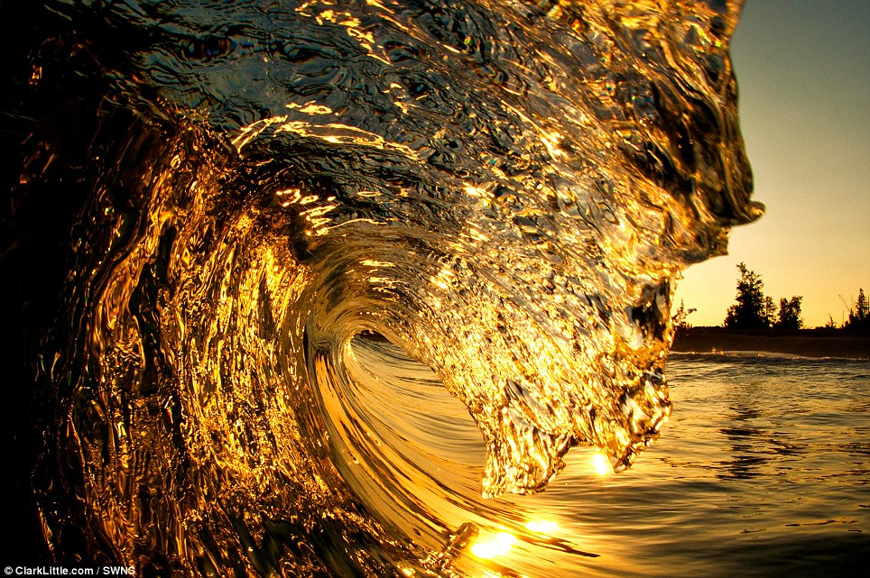 It's the golden hour: A wave captured in the early morning looking straight into the sunrise,  North Shore, Oahu, Hawaii