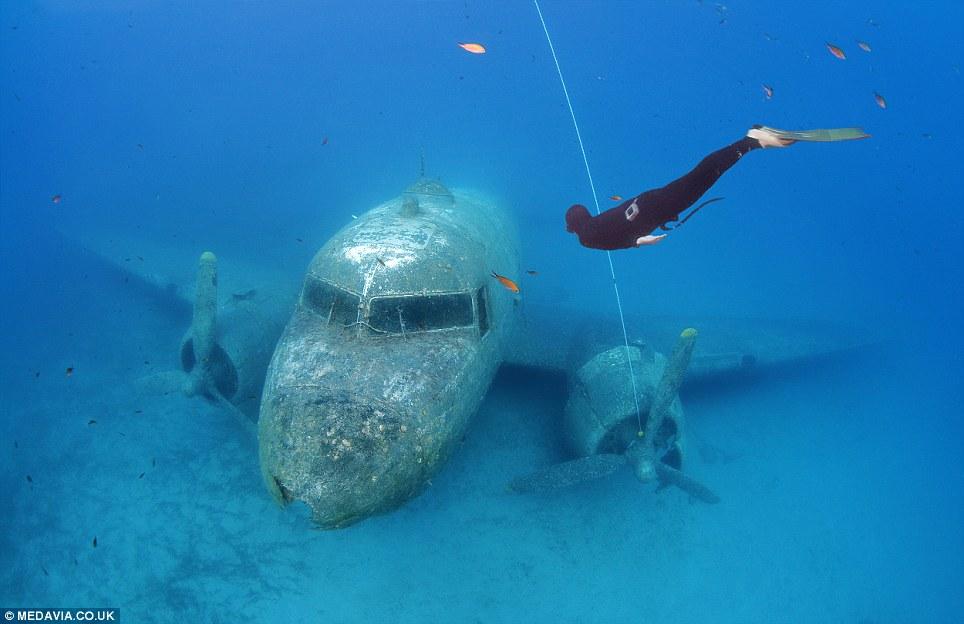 Freedivers Explore Sunken WWII DC3 Plane Still In
