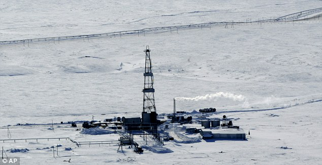 Image result for siberia oil