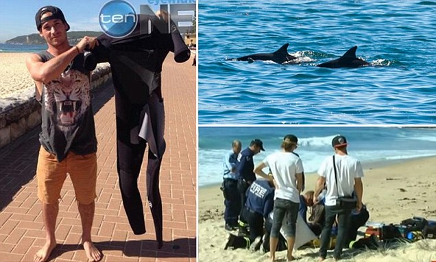 Surfer John Wolfson (left) was injured after being rammed by a bottlenose that belonged to this pod (top right) in Australia. It took more than an hour for medical help to arrive (bottom right)