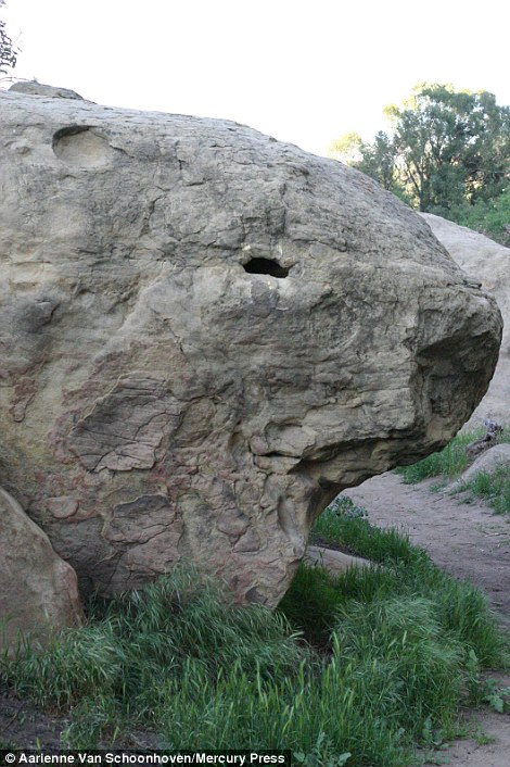 Rock solid: Can you see the face in this stone?