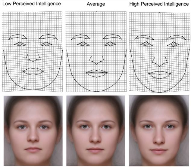 female face patterns