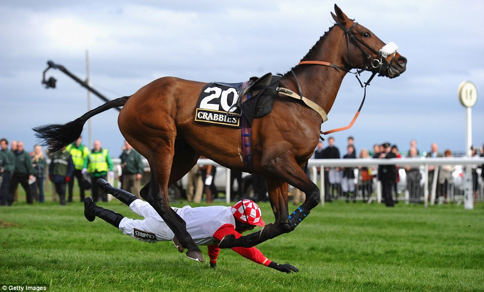 The Superman technique! Jockey Tom Cannon takes a tumble but manages to miss the hooves of his mount King Edmund during the Community Topham Steeple Chase