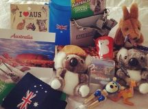 Margot Robbie avoids homesickness with Tim Tams and koala ...