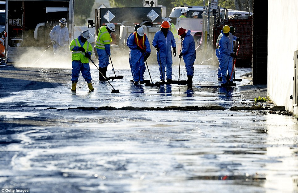Sweep: Workers try to prevent the vast quantities of crude oil flowing into storm drains. The drains empty into the Los Angeles River and there is concern the spill could cause serious harm to wildlife if the oil gets into the water supply