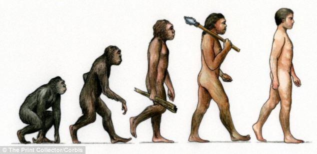 human evolution is speeding