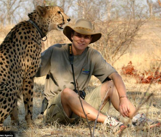 Tame Wild Animals