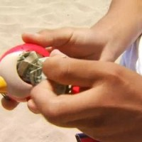 Mystery Donor Organizes Huge Scavenger Hunts at Californian Beachs