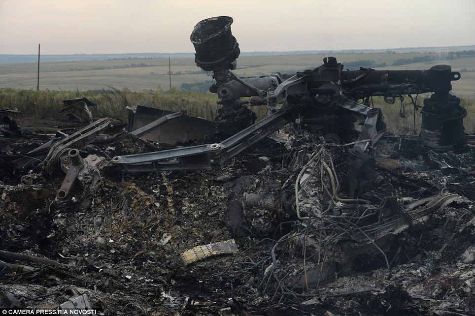 Mangled: Malaysia Airlines is trying to arrange safe access for relatives of victims to the site in eastern Ukraine where its Boeing 777 airliner crashed