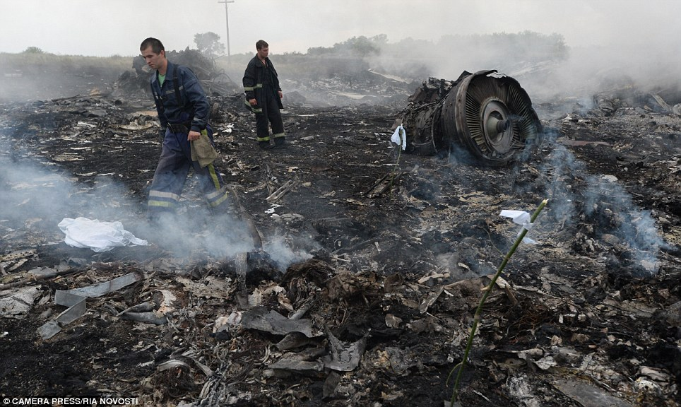 Complex investigation: Rescue workers pick through the debris of Flight MH17 at the crash site outside Shakhtyorsk in the Donetsk region, eastern Ukraine
