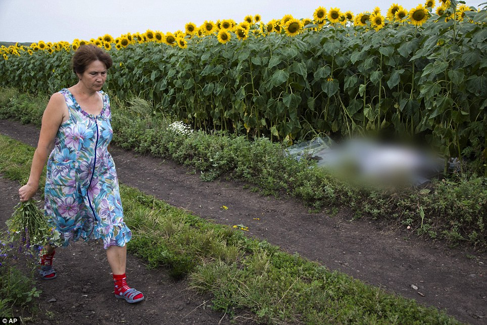 Disturbing: A woman walks past a body covered with a plastic sheet in a sunflower field near the site of a crashed Malaysia Airlines passenger plane near the village of Rozsypne