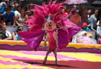 Mexico's circuses caught up in animal rights spat | Daily ...